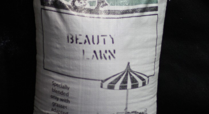 Beauty Lawn Seed Mixture